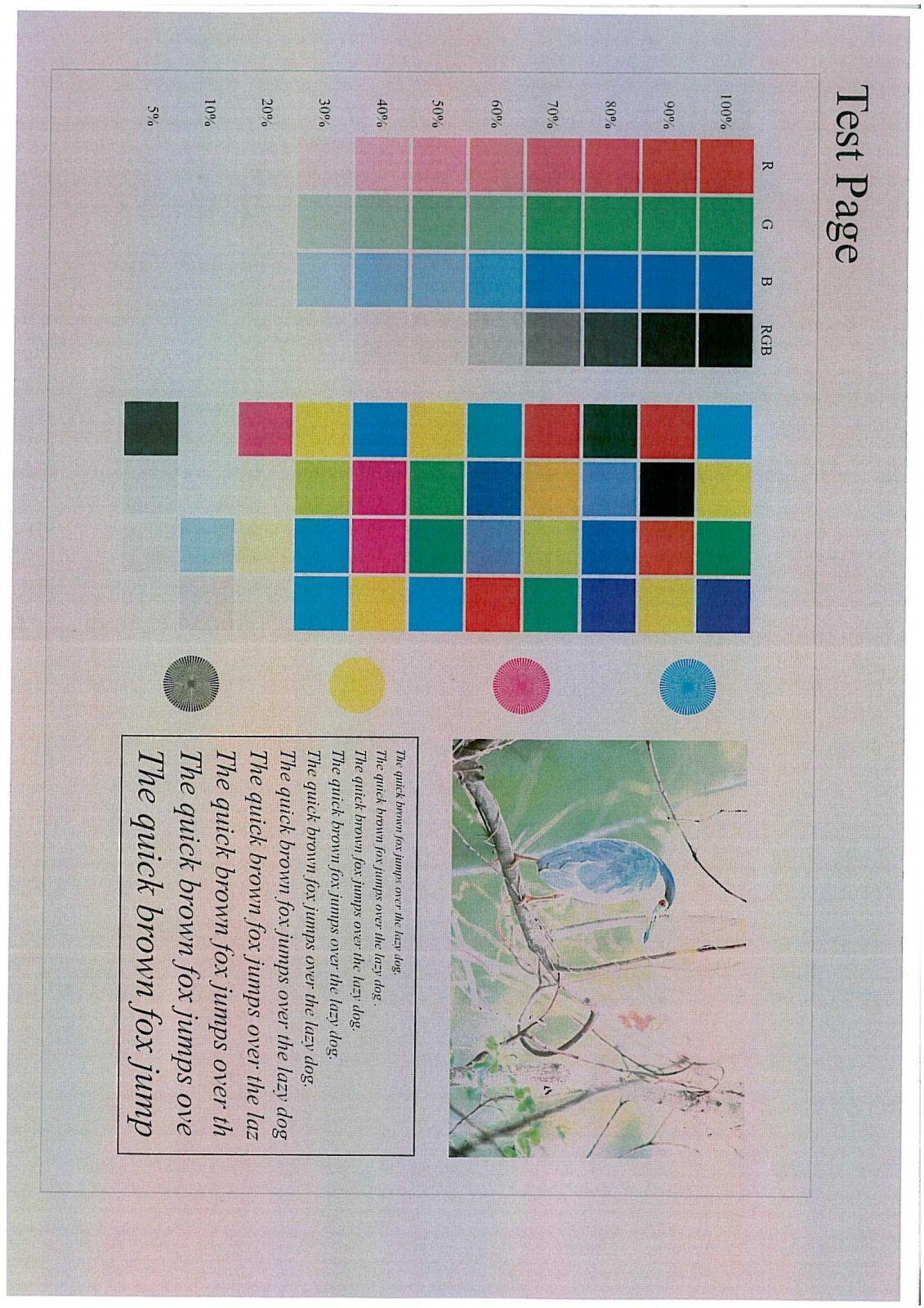KONICA 452 Print Test